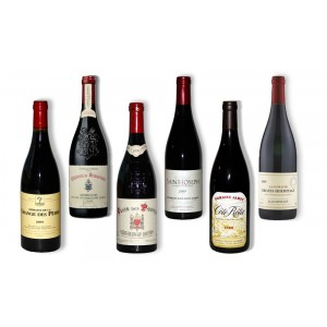 Pack 6 red wines of south 2009