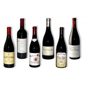 Pack 6 red wines of south 2010