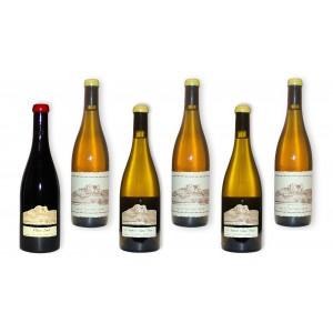 Pack 6 wines Ganevat